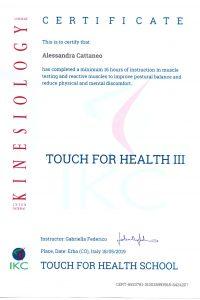 11_Touch for Health 3_tapping per il dolore, controllo dell_andatura, alleviamento dello stress posturale