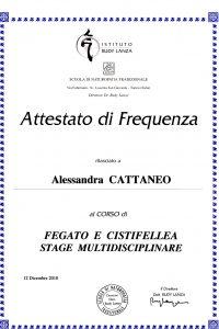 19_Stage multidisciplinare Fegato e Cistifellea_Approfondimento sulle principali disfunzioni epato-biliari e come gestirle attraverso un approccio integrat