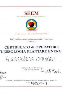6_Riflessologia plantare energetica_Formazione abilitante alla pratica di riflessologia plantare
