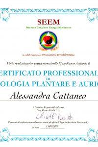 7_Riflessologia plantare_auricoloterapia_Specializzazione in riflessologia plantare e auricolare.